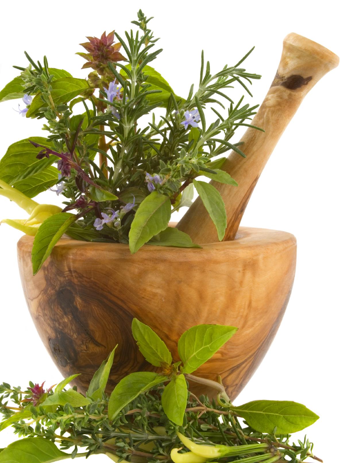 რა მცენარეები გაზრდის წევრი